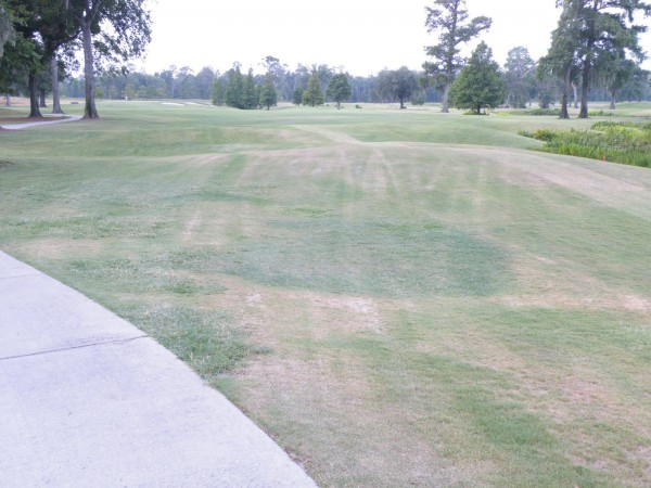 A golf course in drought conditions (golfcoursesuper.blogspot.com).